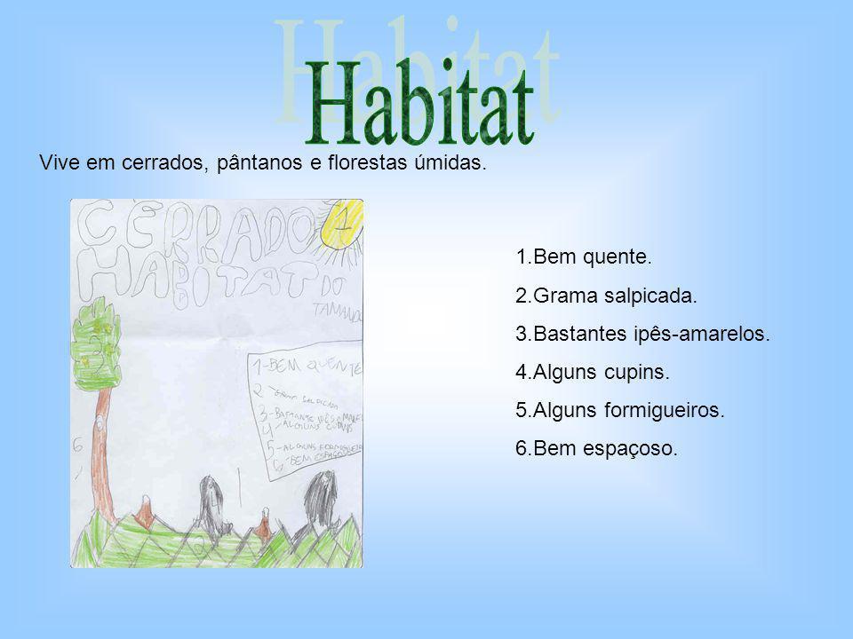 Habitat Vive em cerrados, pântanos e florestas úmidas. 1.Bem quente.