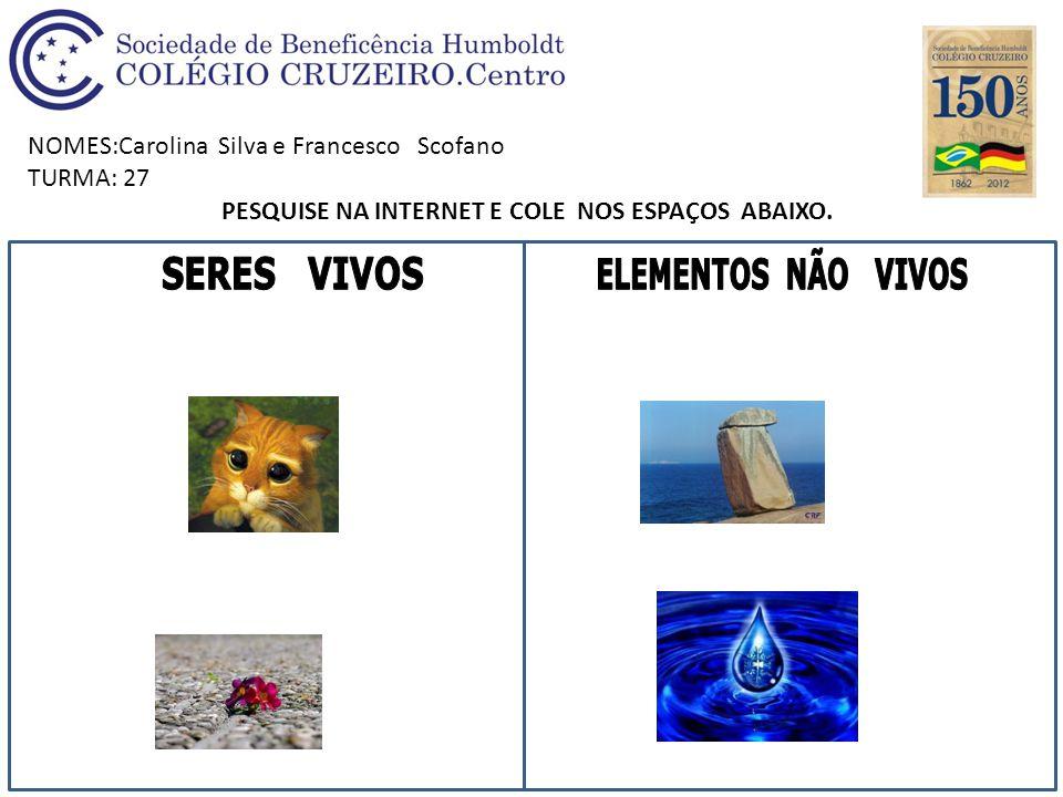 PESQUISE NA INTERNET E COLE NOS ESPAÇOS ABAIXO.