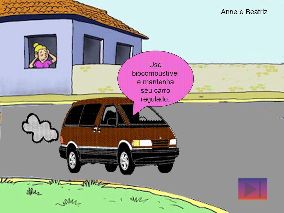 Use biocombustível e mantenha seu carro regulado.