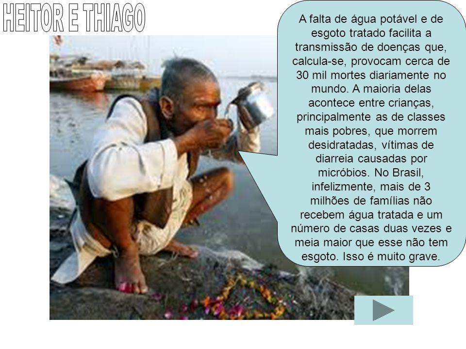 A falta de água potável e de esgoto tratado facilita a transmissão de doenças que, calcula-se, provocam cerca de 30 mil mortes diariamente no mundo. A maioria delas acontece entre crianças, principalmente as de classes mais pobres, que morrem desidratadas, vítimas de diarreia causadas por micróbios. No Brasil, infelizmente, mais de 3 milhões de famílias não recebem água tratada e um número de casas duas vezes e meia maior que esse não tem esgoto. Isso é muito grave.