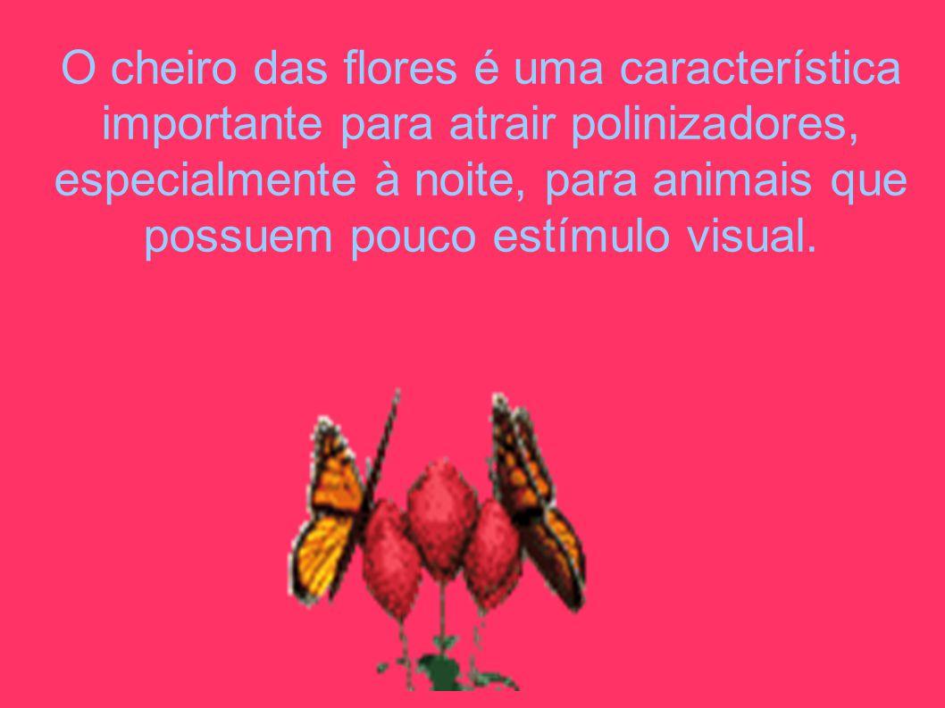 O cheiro das flores é uma característica importante para atrair polinizadores, especialmente à noite, para animais que possuem pouco estímulo visual.