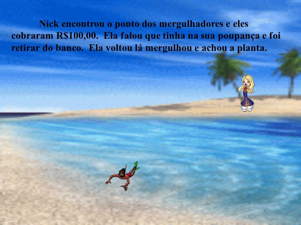 Nick encontrou o ponto dos mergulhadores e eles cobraram R$100,00
