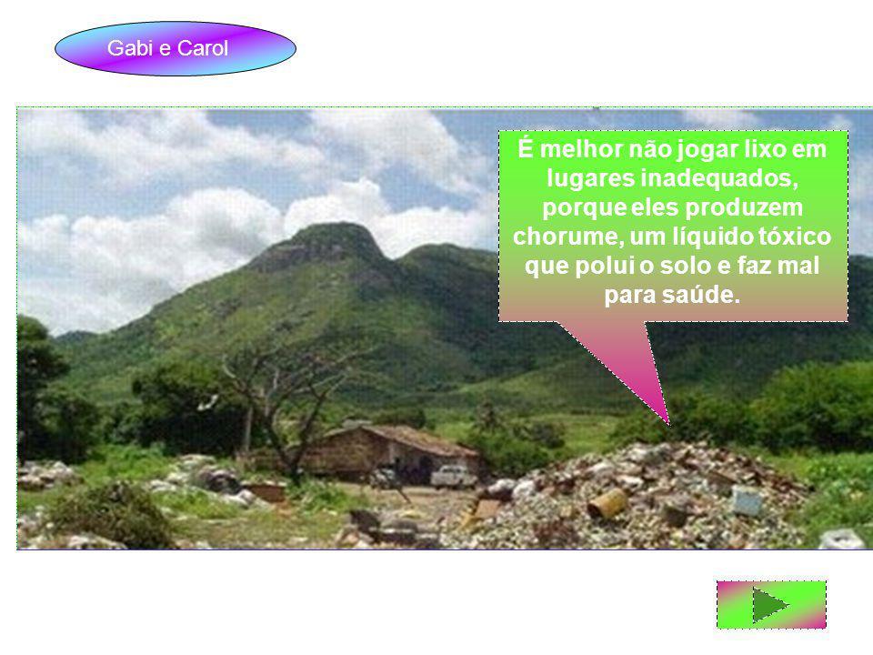 Gabi e Carol É melhor não jogar lixo em lugares inadequados, porque eles produzem chorume, um líquido tóxico que polui o solo e faz mal para saúde.