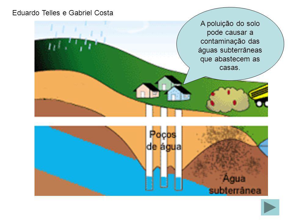 Eduardo Telles e Gabriel Costa