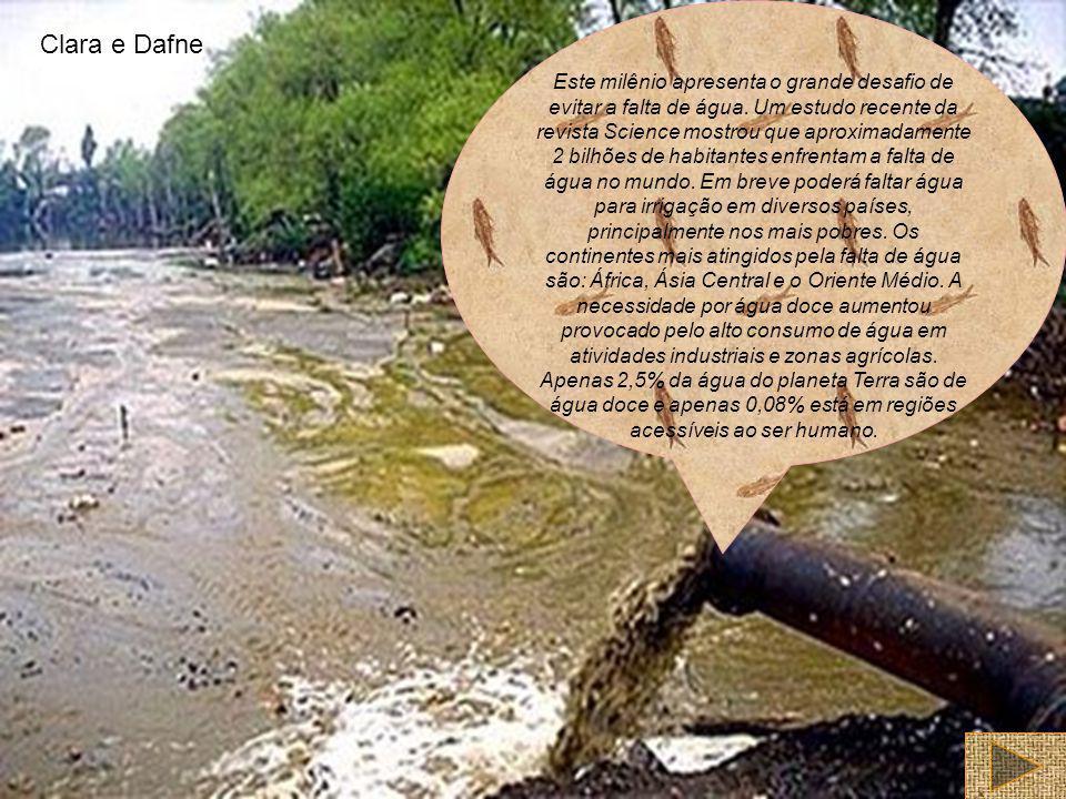 Este milênio apresenta o grande desafio de evitar a falta de água