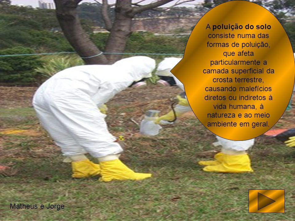 A poluição do solo consiste numa das formas de poluição, que afeta particularmente a camada superficial da crosta terrestre, causando malefícios diretos ou indiretos à vida humana, à natureza e ao meio ambiente em geral.
