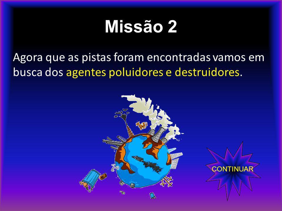 Missão 2 Agora que as pistas foram encontradas vamos em busca dos agentes poluidores e destruidores.