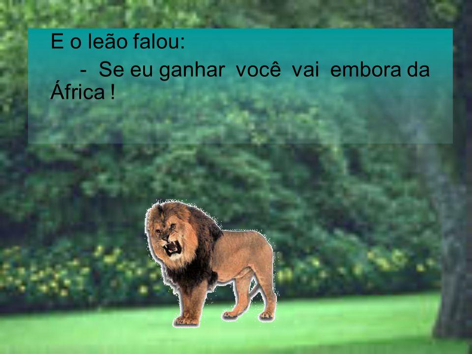 E o leão falou: - Se eu ganhar você vai embora da África !