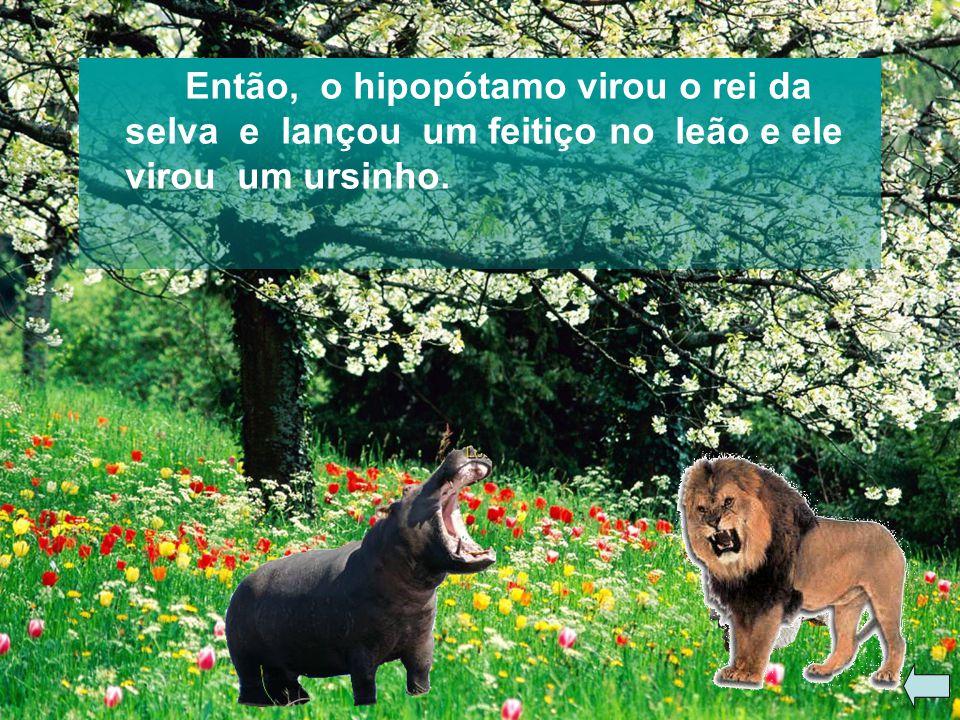 Então, o hipopótamo virou o rei da selva e lançou um feitiço no leão e ele virou um ursinho.