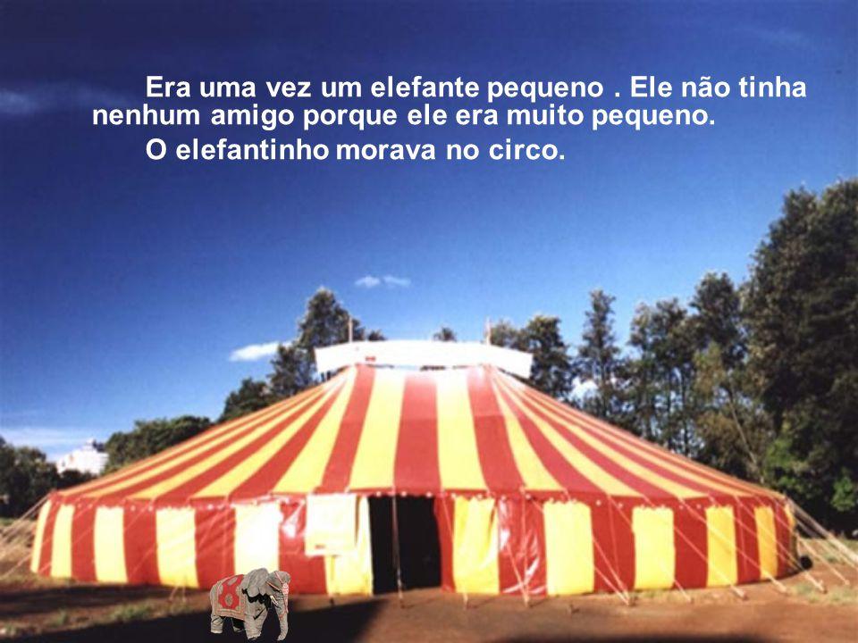 O elefantinho morava no circo.