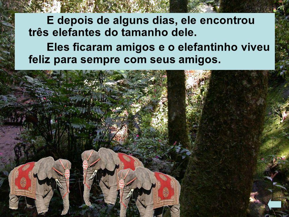 E depois de alguns dias, ele encontrou três elefantes do tamanho dele.