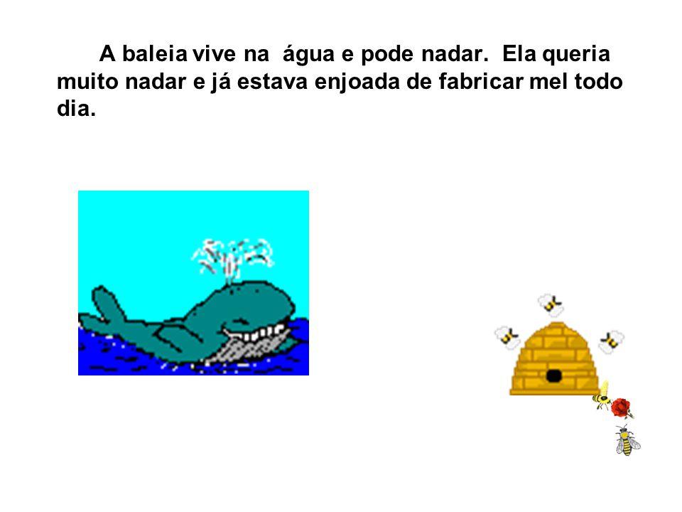 A baleia vive na água e pode nadar