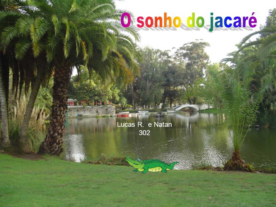 O sonho do jacaré Lucas R. e Natan 302