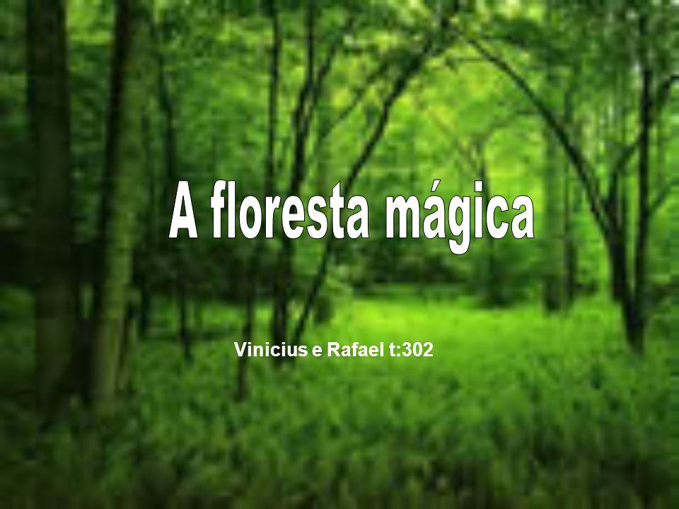 A floresta mágica Vinicius e Rafael t:302