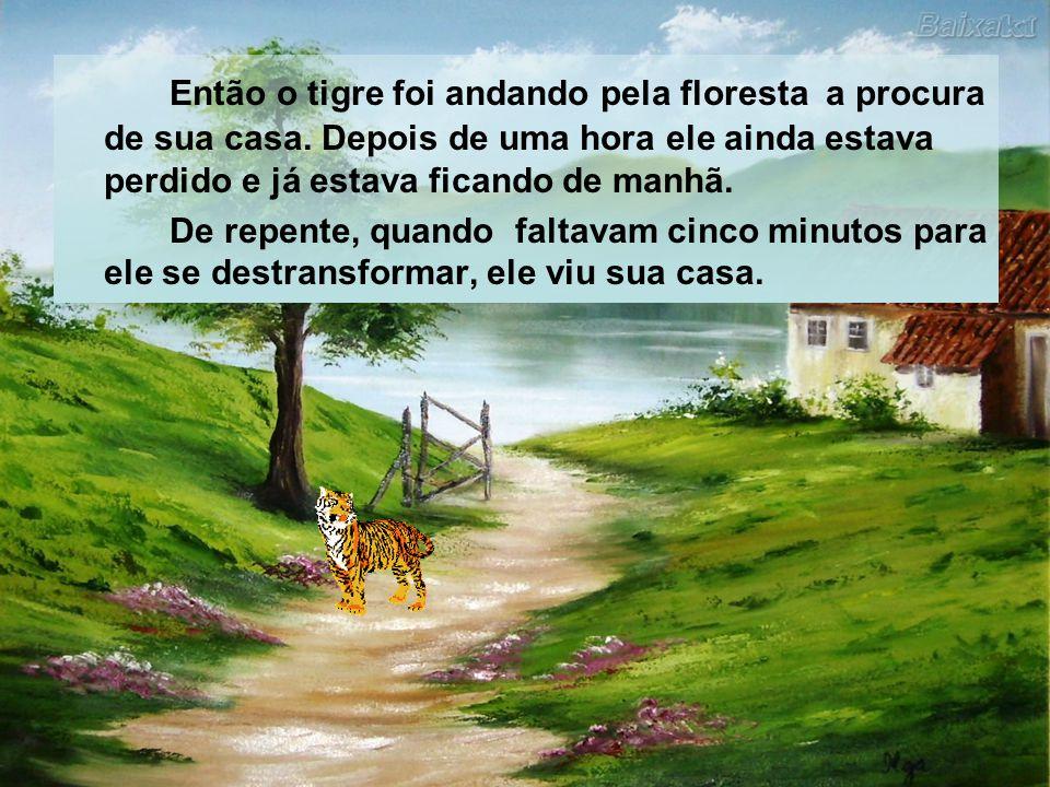 Então o tigre foi andando pela floresta a procura de sua casa