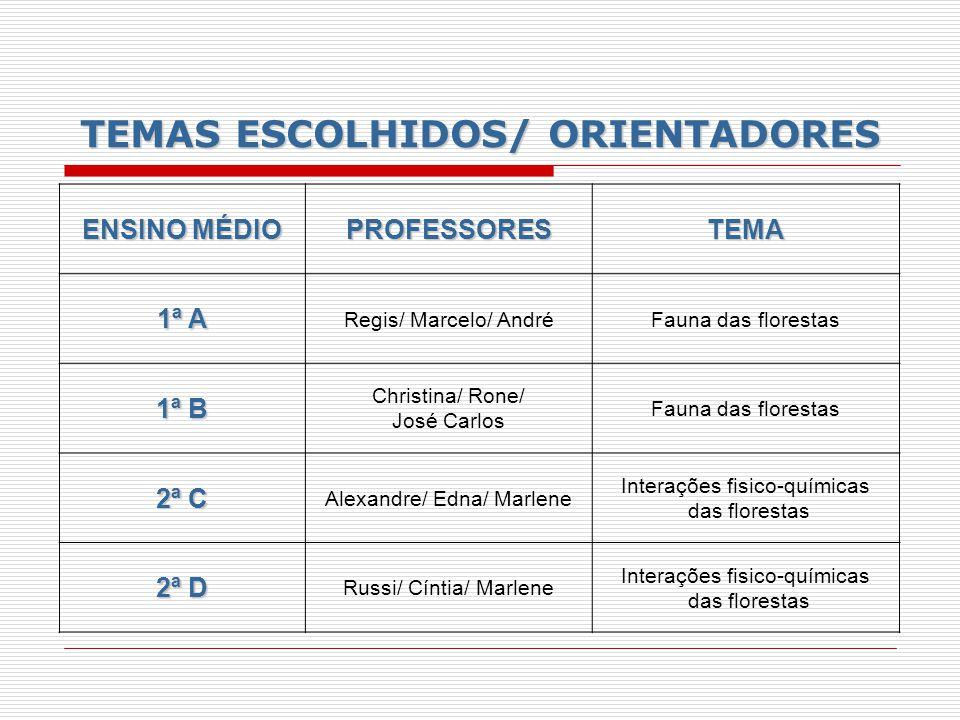 TEMAS ESCOLHIDOS/ ORIENTADORES