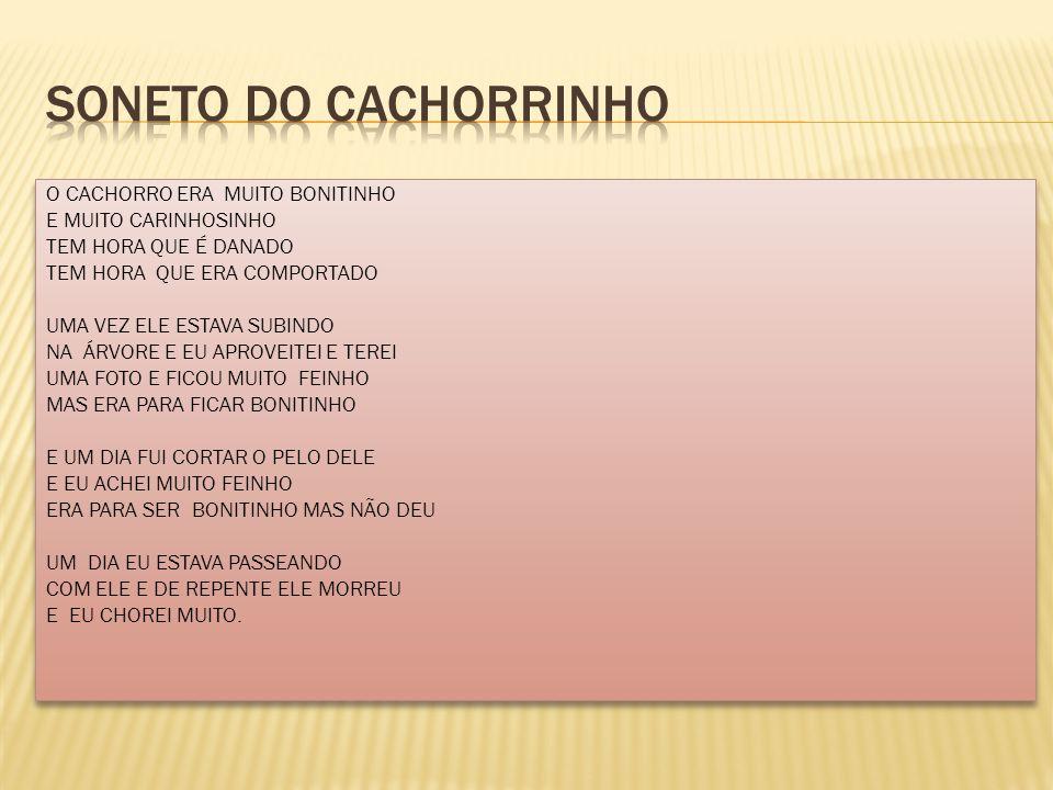 SONETO DO CACHORRINHO