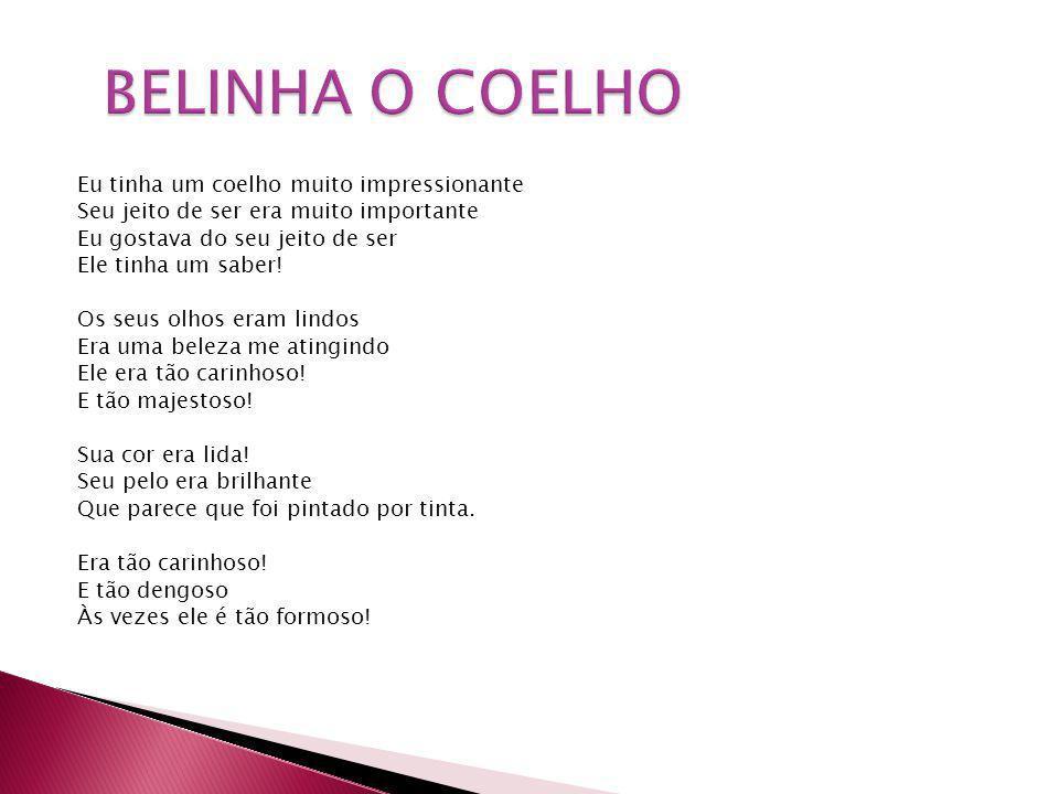 BELINHA O COELHO