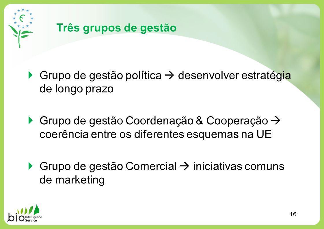 Grupo de gestão política  desenvolver estratégia de longo prazo