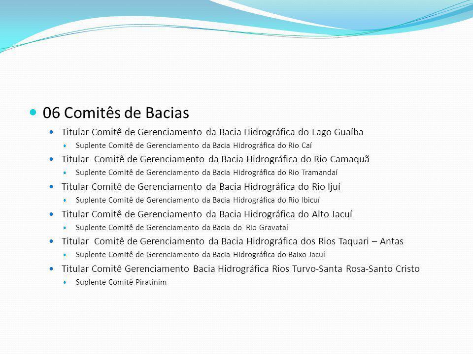 06 Comitês de Bacias Titular Comitê de Gerenciamento da Bacia Hidrográfica do Lago Guaíba.