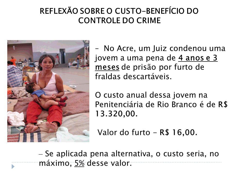 REFLEXÃO SOBRE O CUSTO-BENEFÍCIO DO CONTROLE DO CRIME