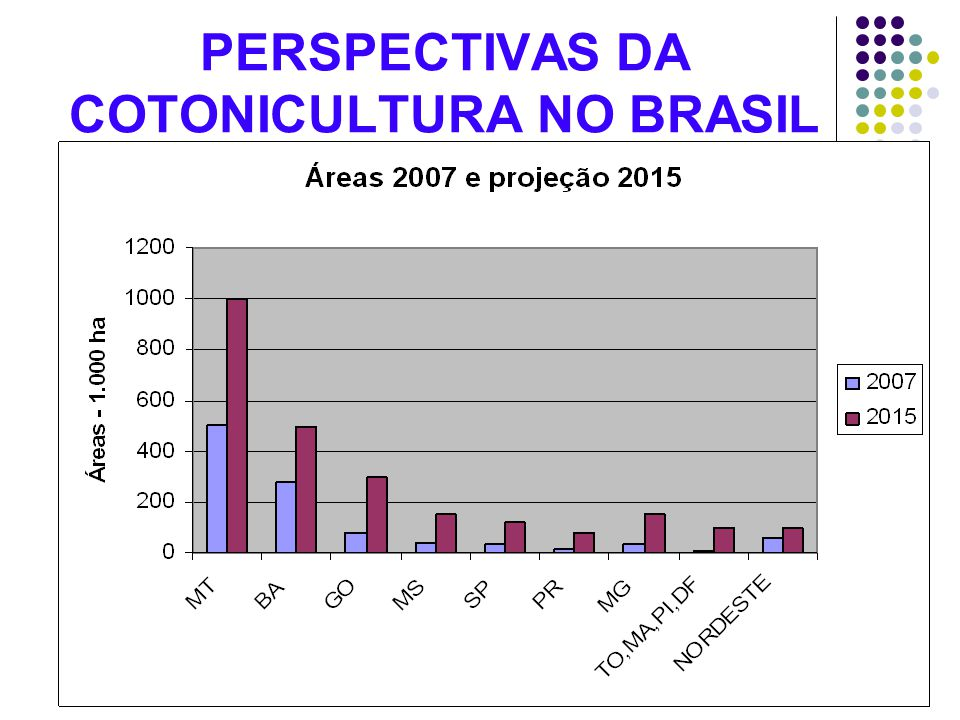 PERSPECTIVAS DA COTONICULTURA NO BRASIL