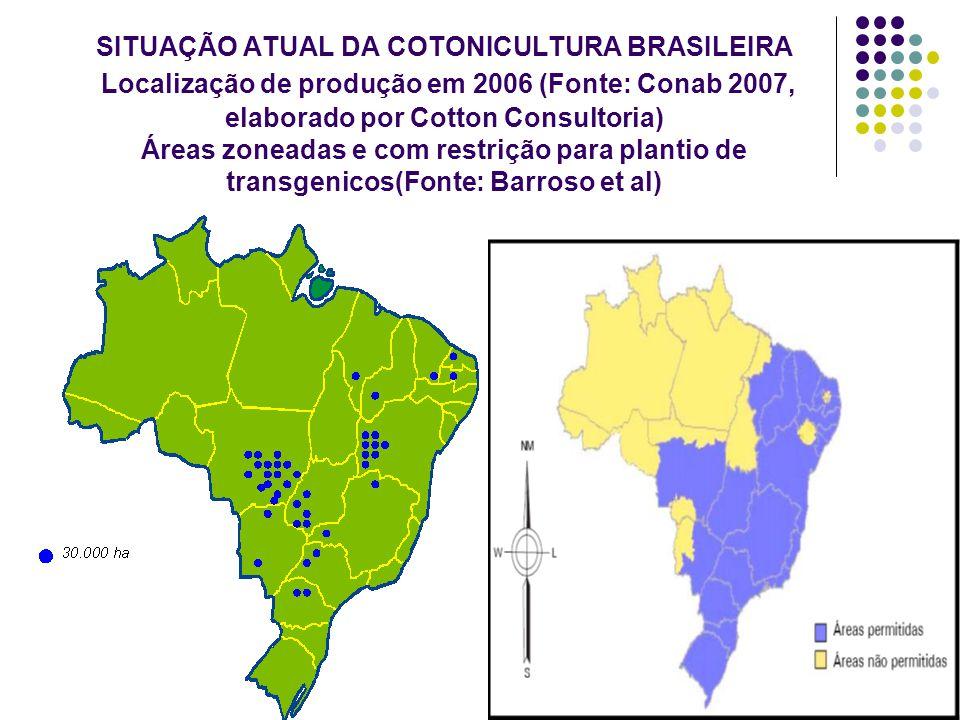 SITUAÇÃO ATUAL DA COTONICULTURA BRASILEIRA Localização de produção em 2006 (Fonte: Conab 2007, elaborado por Cotton Consultoria) Áreas zoneadas e com restrição para plantio de transgenicos(Fonte: Barroso et al)