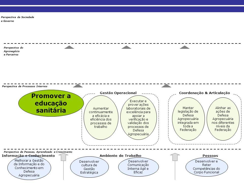 Promover a educação sanitária