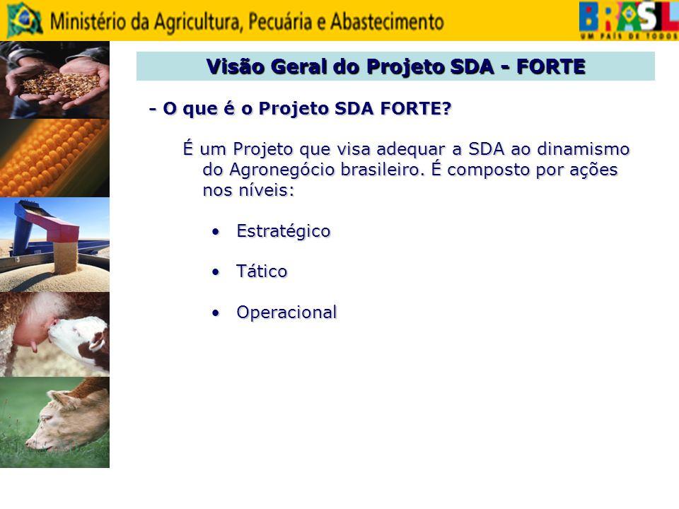 Visão Geral do Projeto SDA - FORTE