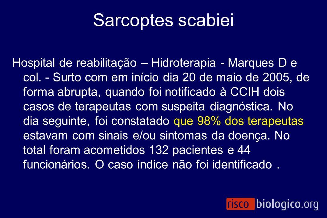Sarcoptes scabiei