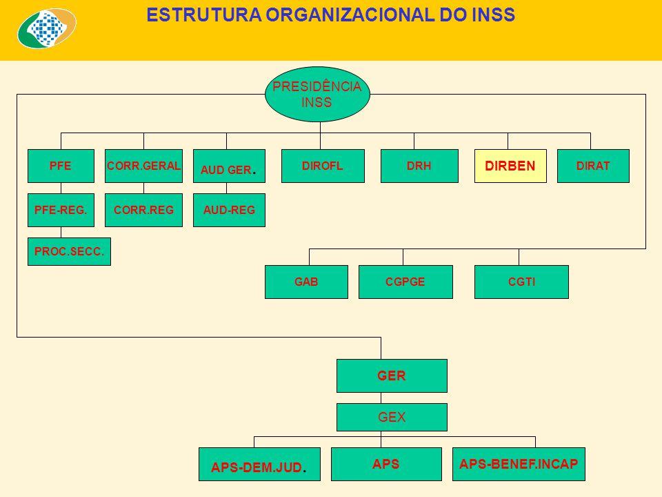 ESTRUTURA ORGANIZACIONAL DO INSS