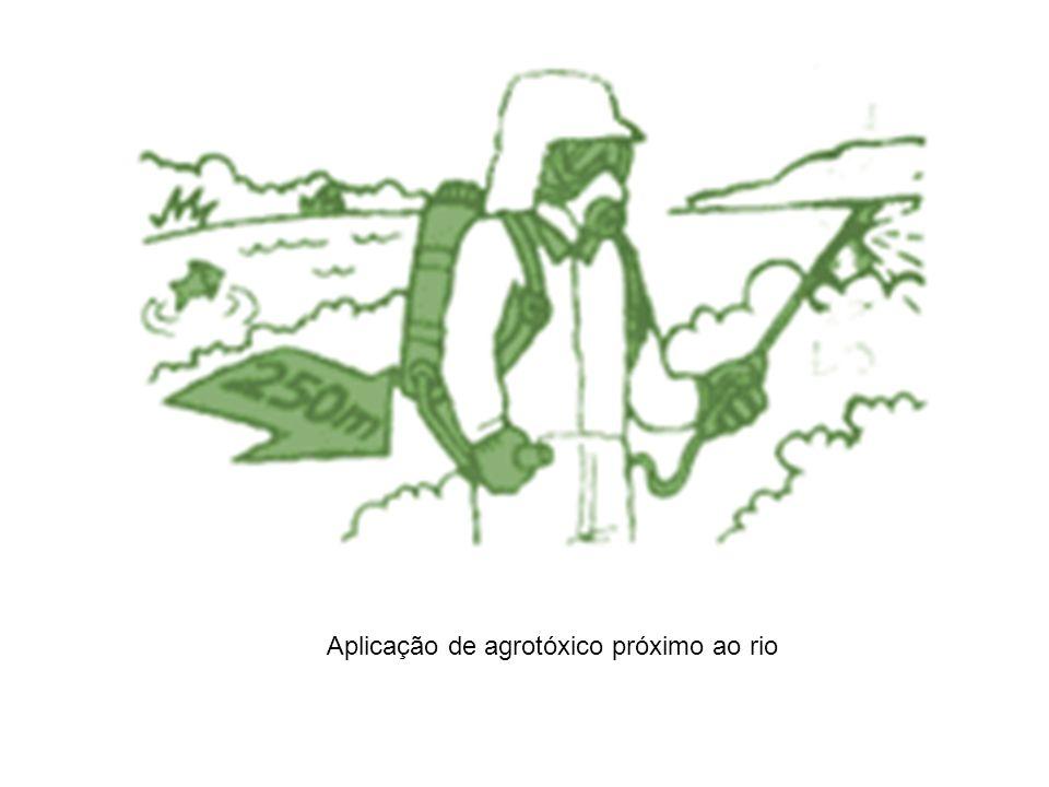 Aplicação de agrotóxico próximo ao rio