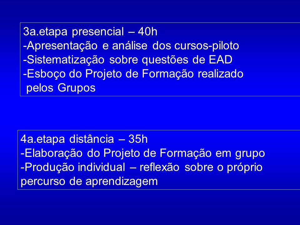 3a.etapa presencial – 40h -Apresentação e análise dos cursos-piloto. -Sistematização sobre questões de EAD.