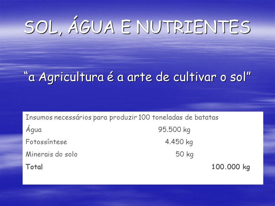 a Agricultura é a arte de cultivar o sol