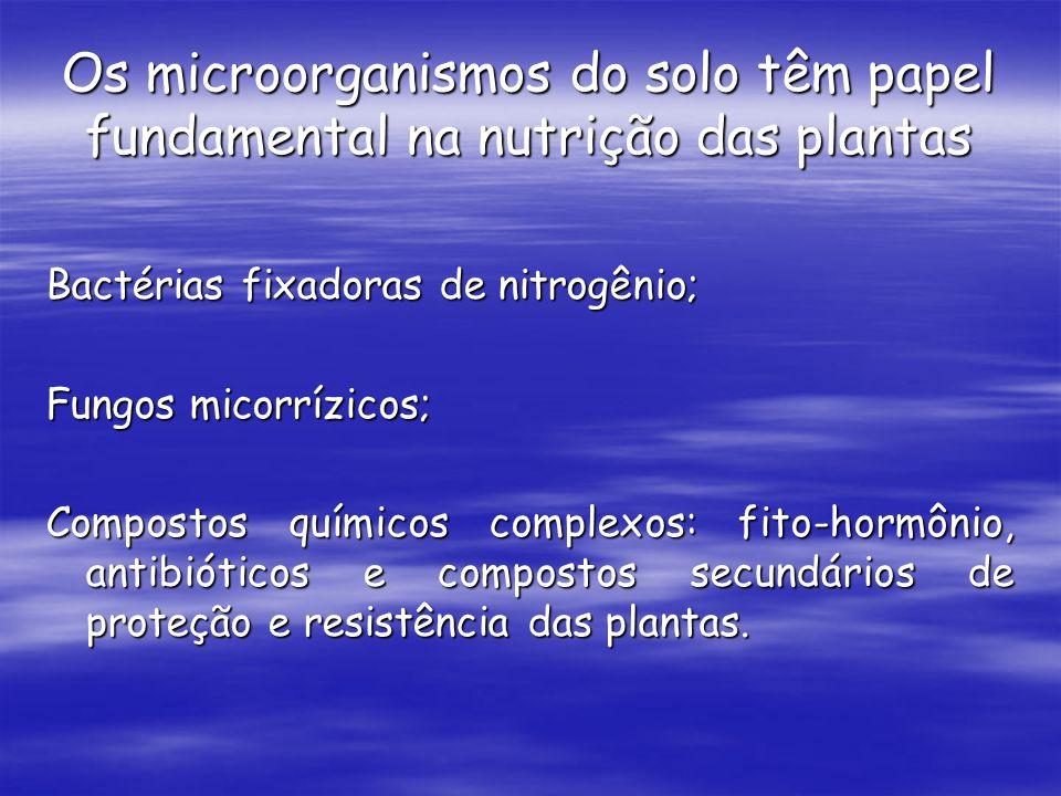 Os microorganismos do solo têm papel fundamental na nutrição das plantas