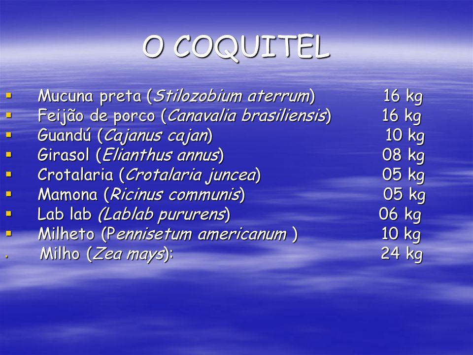 O COQUITEL Mucuna preta (Stilozobium aterrum) 16 kg