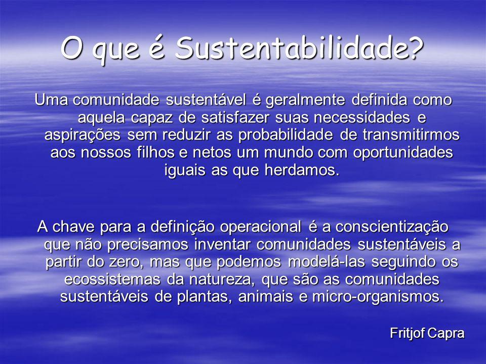 O que é Sustentabilidade