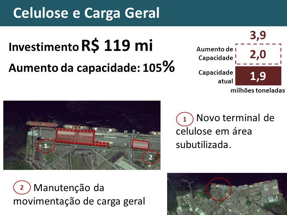 Celulose e Carga Geral 3,9 Investimento R$ 119 mi