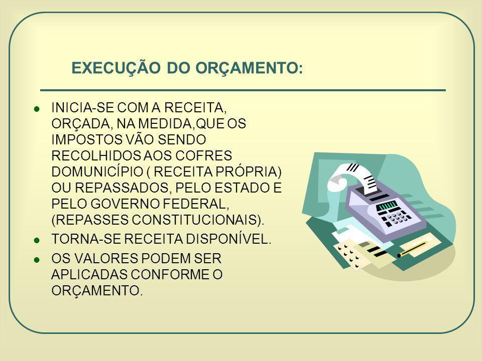 EXECUÇÃO DO ORÇAMENTO: