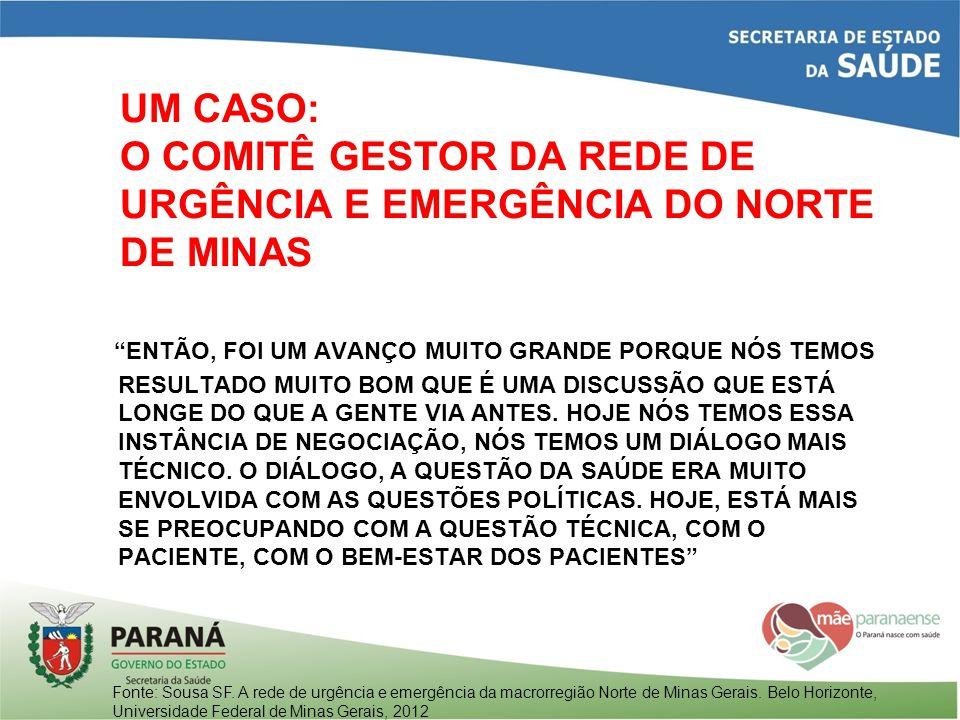 UM CASO: O COMITÊ GESTOR DA REDE DE URGÊNCIA E EMERGÊNCIA DO NORTE DE MINAS