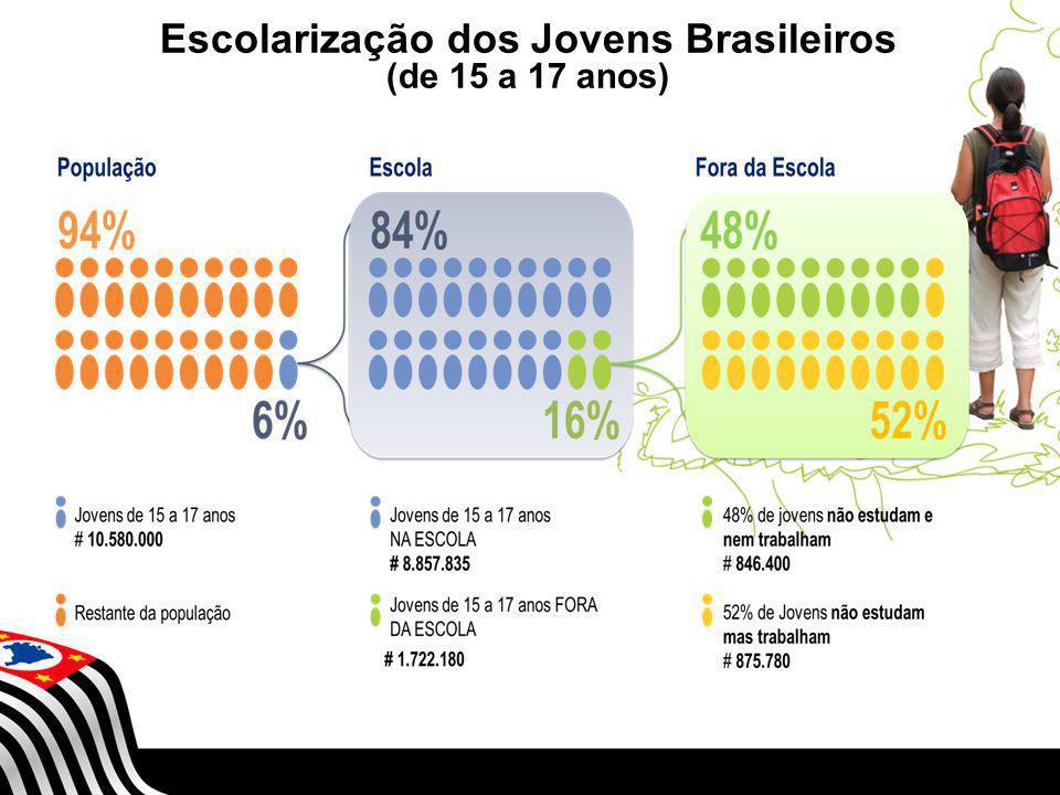 Escolarização dos Jovens Brasileiros