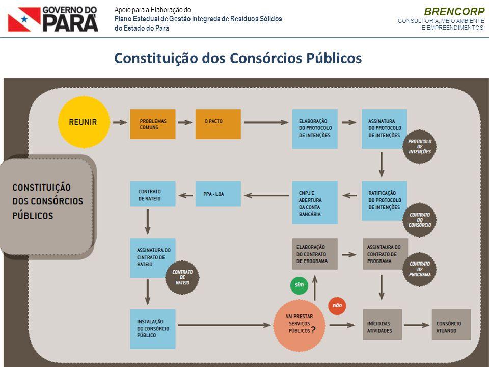 Constituição dos Consórcios Públicos