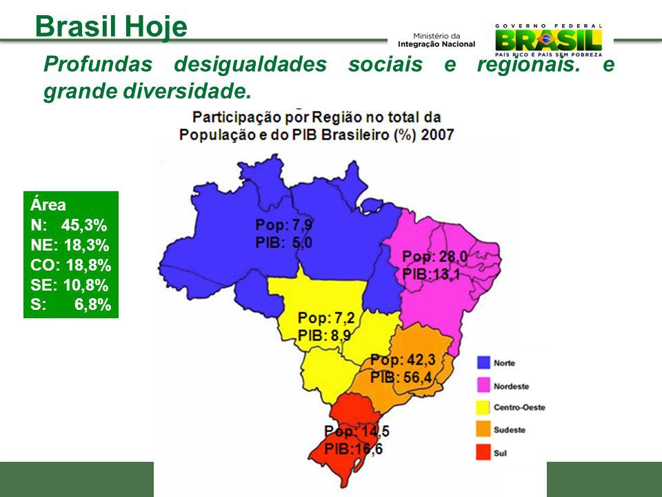 Brasil Hoje Profundas desigualdades sociais e regionais. e grande diversidade. Área. N: 45,3% NE: 18,3%