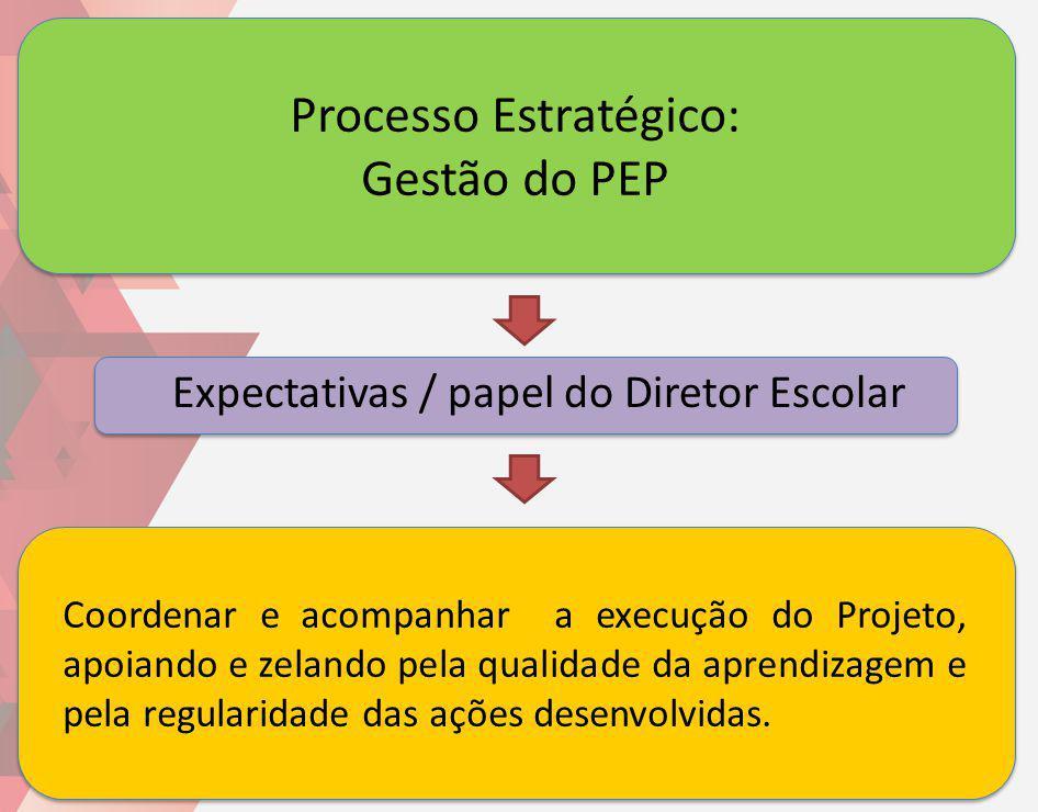 Processo Estratégico: Gestão do PEP