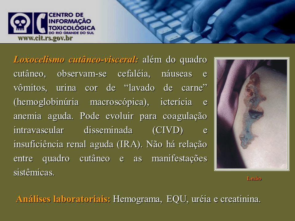 Análises laboratoriais: Hemograma, EQU, uréia e creatinina.