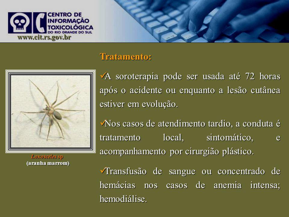 www.cit.rs.gov.br Tratamento: A soroterapia pode ser usada até 72 horas após o acidente ou enquanto a lesão cutânea estiver em evolução.