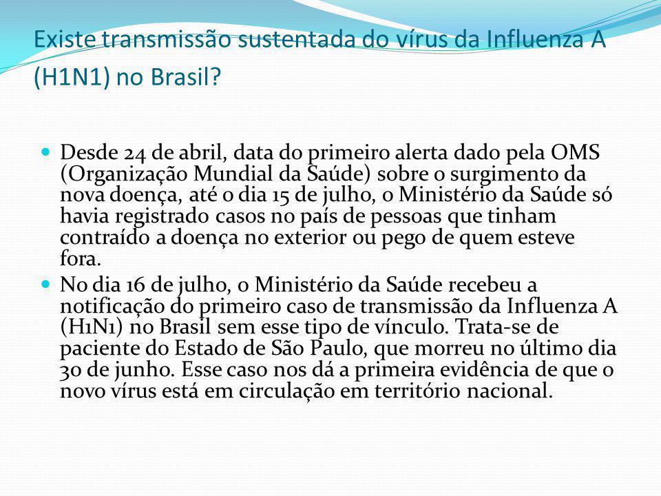 Existe transmissão sustentada do vírus da Influenza A (H1N1) no Brasil