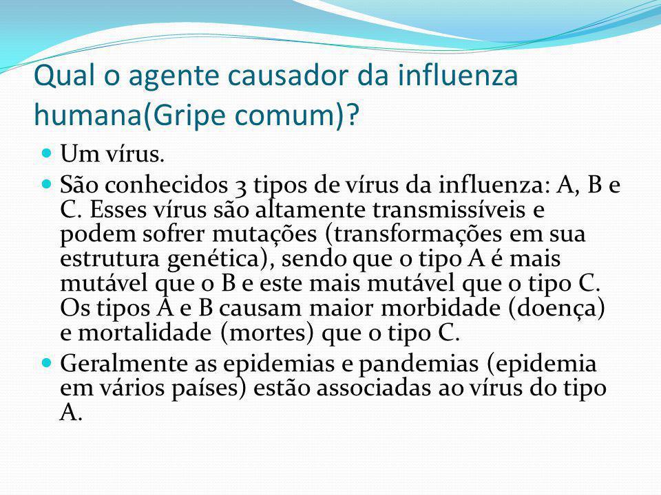 Qual o agente causador da influenza humana(Gripe comum)