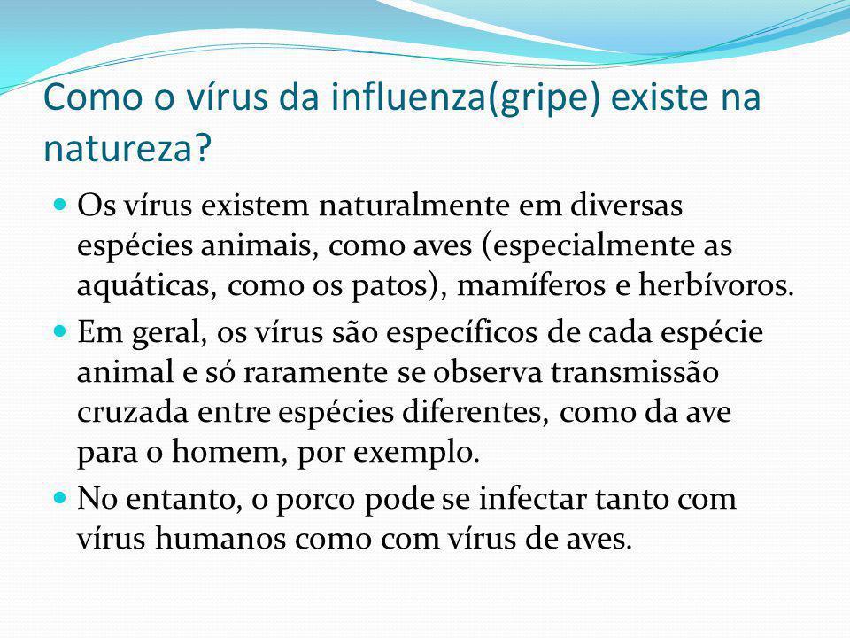 Como o vírus da influenza(gripe) existe na natureza