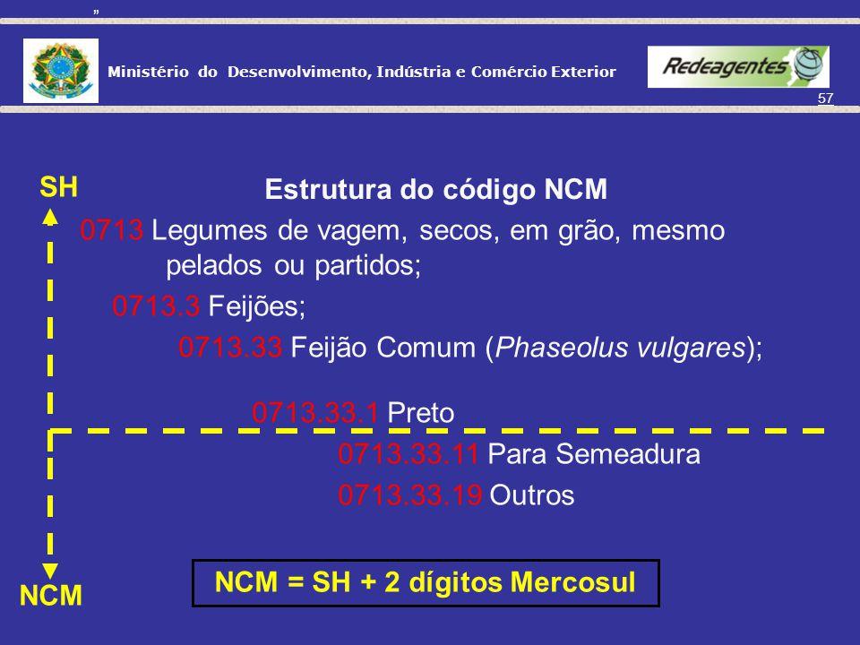 Estrutura do código NCM NCM = SH + 2 dígitos Mercosul